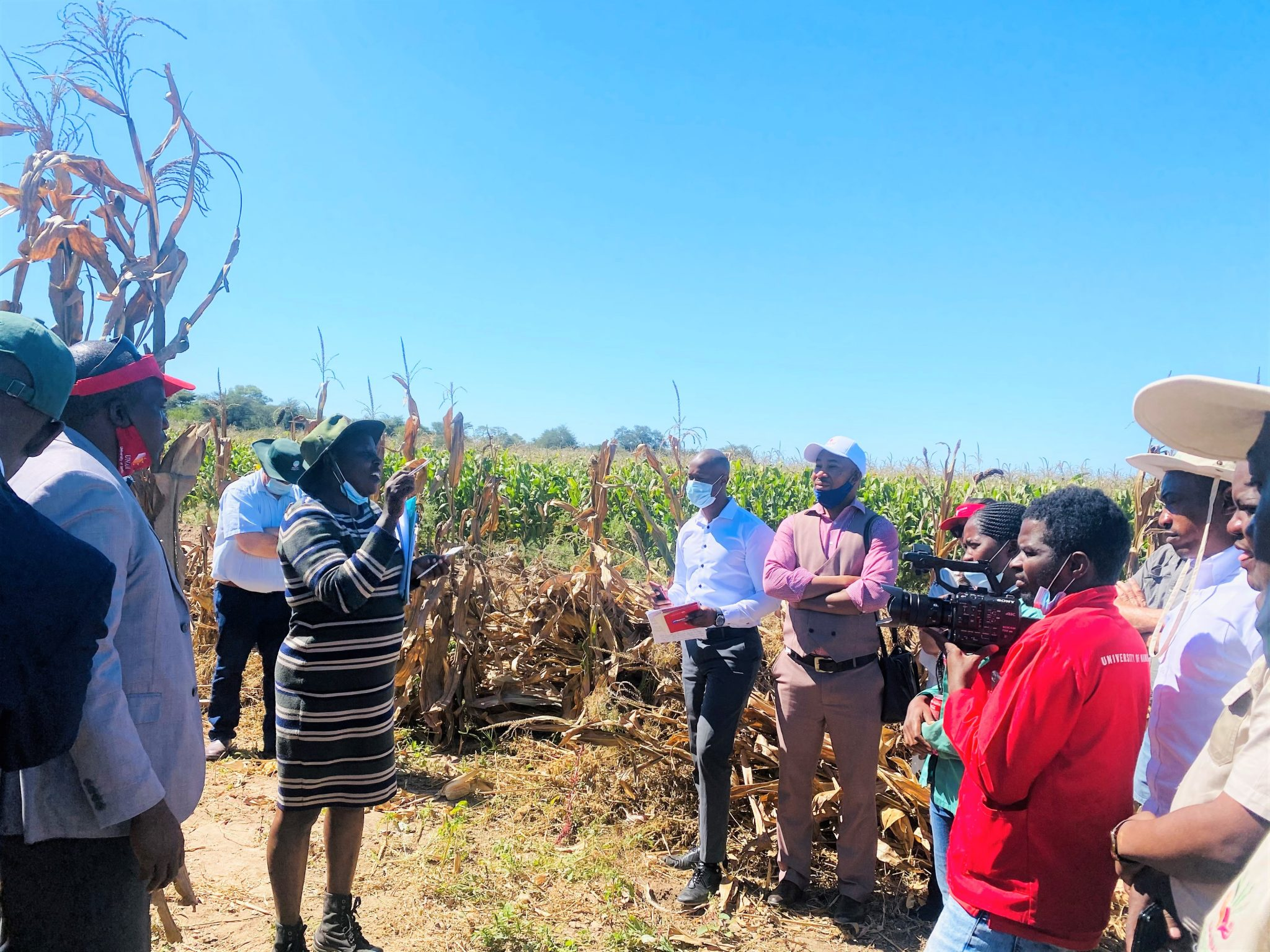 NAB AND UNAM SEED RESEARCH PROJECT TO YIELD PROMISING OUTCOMES